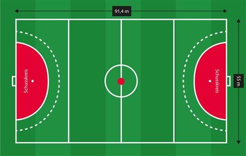 Fakten - Zahlen - Regeln für Feldhockey & Hallenhockey